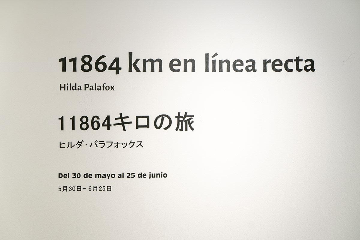 ヒルダ・パラフォックス展覧会「メキシコから日本へ:11864キロの旅」展示画像1
