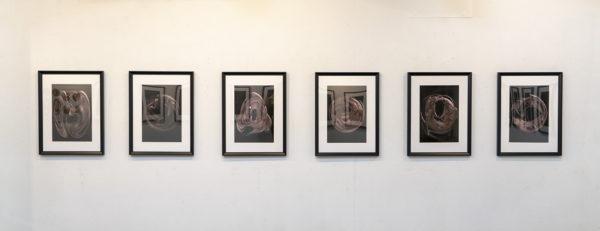 酒井孝彦 個展「人間の細胞内小胞体的表現による肖像写真」展示風景